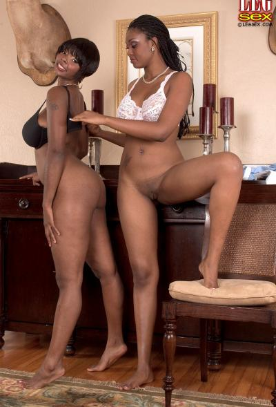 Лесбийский секс темнокожих дам 14 фото
